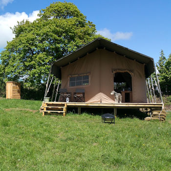 Glamping at Top of the Woods in Pembrookeshire, Wales, things to do in the summer